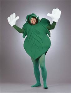 Adult Fig Leaf Costume
